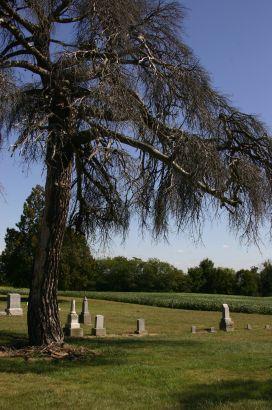 Duke's Cemetery